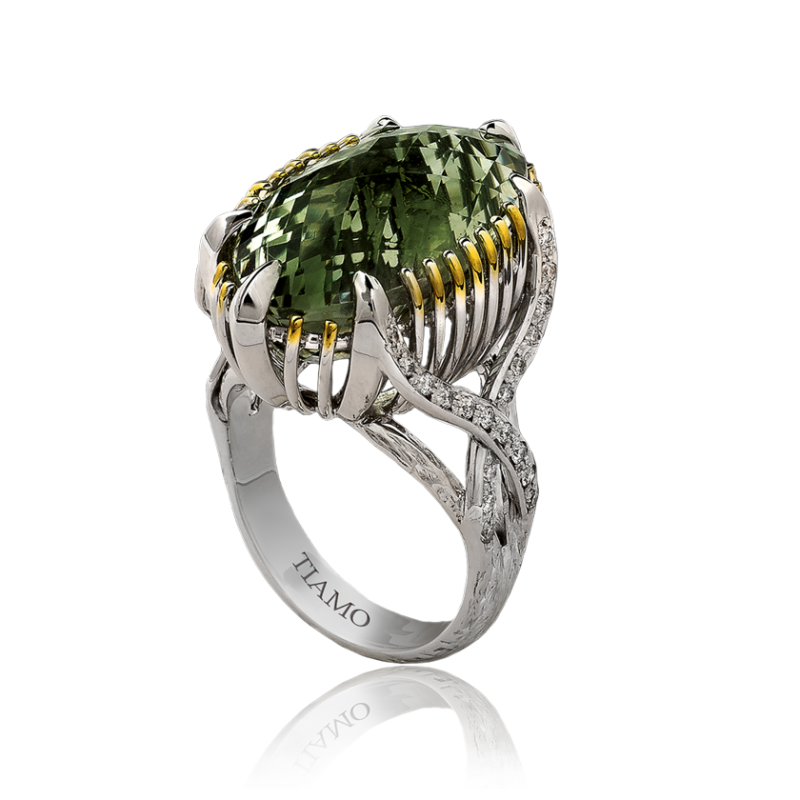 ring_colordance_TE_5106_1898